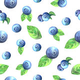 Blueberry seamless pattern. Seamless pattern with hand painted watercolor blueberry inspired by summer garden. Colorful fruit background perfect for fabric Stock Images