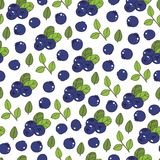 Blueberry Seamless Pattern. Juicy summer background with berries stock illustration