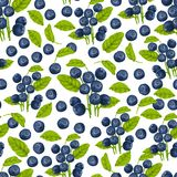 Blueberry seamless pattern. Natural fresh organic forest blueberry seamless pattern vector illustration Stock Photography