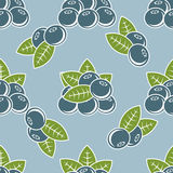 Blueberry seamless pattern. Natural fresh organic forest blueberry seamless pattern vector illustration Royalty Free Stock Photos