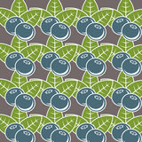 Blueberry seamless pattern. Natural fresh organic forest blueberry seamless pattern vector illustration Stock Images