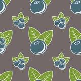 Blueberry seamless pattern. Natural fresh organic forest blueberry seamless pattern vector illustration Royalty Free Stock Photo