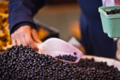 Blueberry selling in a market Royalty Free Stock Photo