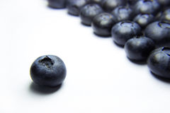 Blueberry Set Apart. A shot of one blueberry set apart from an organized crowd of blueberries on a grey/white background. Could represent leadership, uniqueness Royalty Free Stock Photos
