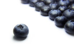 Blueberry Set Apart. A shot of one blueberry set apart from an organized crowd of blueberries on a white background. Could represent leadership, uniqueness, or Royalty Free Stock Photography