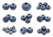 Blueberry set Stock Photography