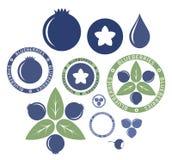 Blueberry. Set. Vector illustration (EPS 10) vector illustration