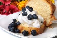 Blueberry shortcake Stock Images