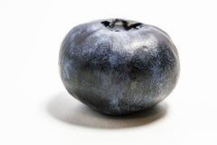 Blueberry. Single blueberry on white background Stock Photos