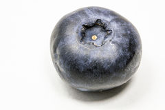 Blueberry. Single blueberry on white background Stock Photography