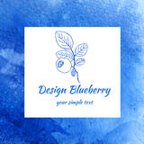 Blueberry sketch  on white background, line art, Watercolor blue texture, Design berry for packaging, vector Royalty Free Stock Image