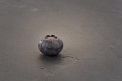 Blueberry on a slate. Blueberry placed on a black slate Royalty Free Stock Image