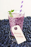 Blueberry smoothie in a glass jar with a straw and sprig of mint Stock Images