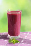 Blueberry smoothie in a highball glass Royalty Free Stock Photo