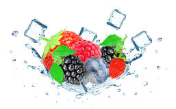 Blueberry splash water and ice cubes Royalty Free Stock Images