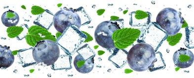 Blueberry splash Royalty Free Stock Image