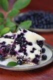 Blueberry sponge cake Royalty Free Stock Photos