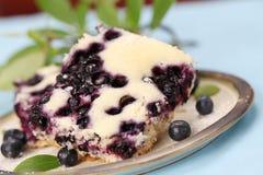 Blueberry sponge cake Royalty Free Stock Photography