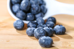 Blueberry  on a spoon concept for healthy eating and nutrition s Royalty Free Stock Photo