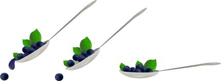 Blueberry spoon Royalty Free Stock Photography
