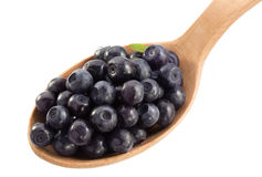 Blueberry in spoon on white Stock Photos