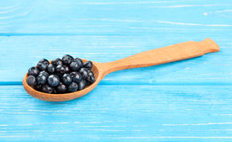 Blueberry in spoon Stock Photo