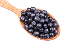 Blueberry in the spoon Royalty Free Stock Image