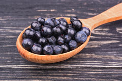 Blueberry in the spoon Royalty Free Stock Photos