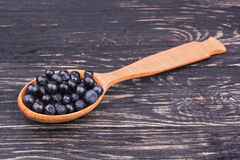 Blueberry in the spoon Royalty Free Stock Photography
