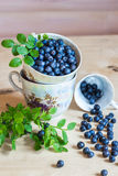Blueberry still life on a light background Stock Photography