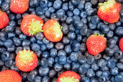 Blueberry and strawberry Royalty Free Stock Images