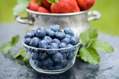 Blueberry and Strawberry in Bowls. Royalty Free Stock Images