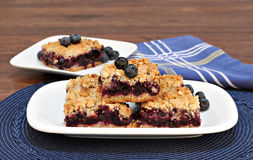 Blueberry streusel cookie bars. Royalty Free Stock Image