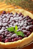 Blueberry tart. Tart with blueberry (Northern Highbush Blueberry) fruits and powdered sugar. Berries are red after baking Royalty Free Stock Image