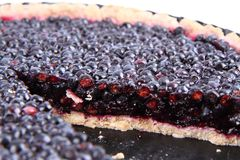 Blueberry Tart Stock Photos