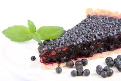 Blueberry Tart Stock Photography