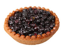 Blueberry tart Royalty Free Stock Photo