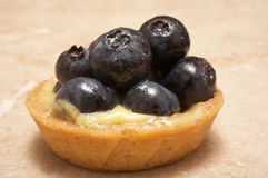 Blueberry Tart Stock Image