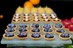 Blueberry tart on buffet line Stock Image