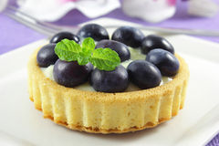 Blueberry tart Royalty Free Stock Photography