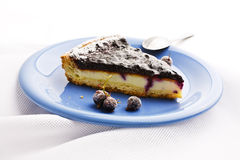 Blueberry Tart on linen tablecloths Stock Photography