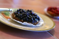 Blueberry Tart on Plate Stock Photos