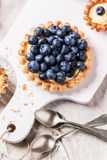 Blueberry tart Royalty Free Stock Photography