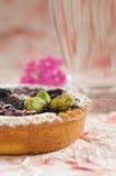 Blueberry tartelette Stock Photos