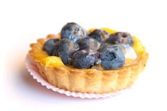 Blueberry tartlet Stock Images