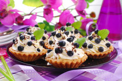 Blueberry tartlets with whipped cream Royalty Free Stock Photography
