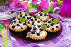 Blueberry tartlets with whipped cream Stock Photography