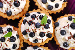 Blueberry tartlets with whipped cream Royalty Free Stock Photos