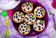 Blueberry tartlets with whipped cream Stock Images