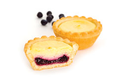 Blueberry Tarts Stock Photos